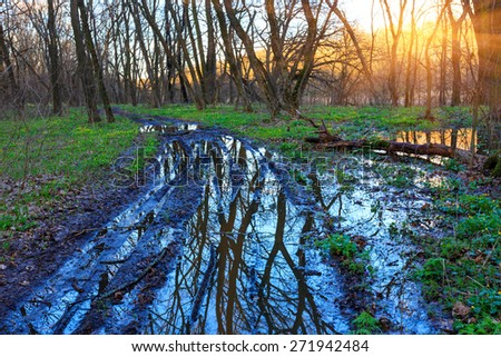 Bad dirty road in spring forest at sunset time - stock photo