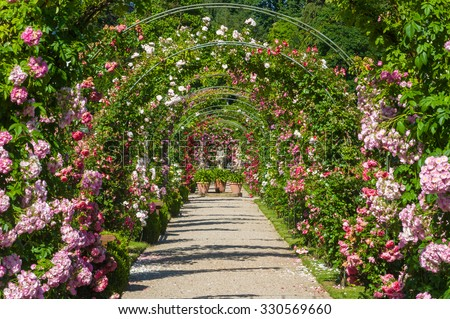 BADEN BADEN, GERMANY   JUNE 21, 2012: Rose Arches And Gods Statue