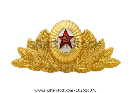 Badge of the expert of the officer of the Air Forces on a white background - stock photo