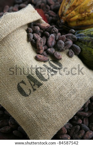 Bag of cocoa beans - stock photo