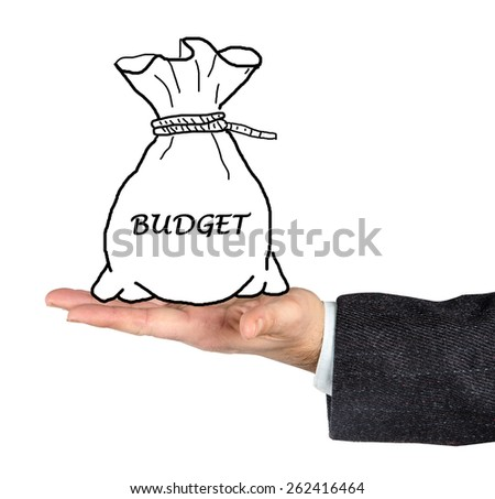 bag with budget - stock photo