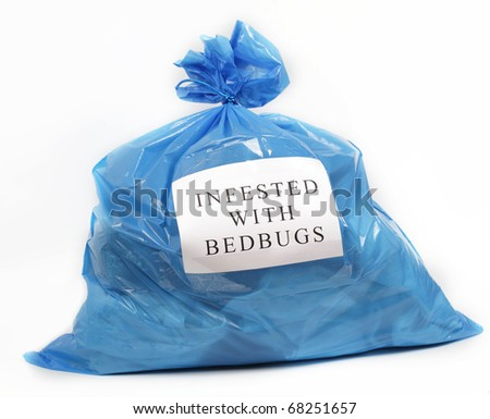Bag with things infested with bedbugs - stock photo