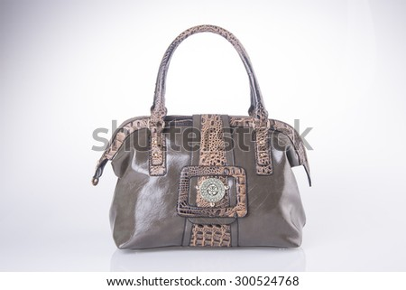 bag. women bag on background - stock photo