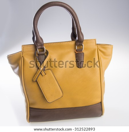 bag. women bag on background