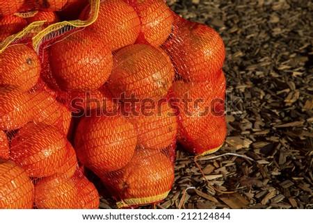 Bags of seasonal oranges on wood chip floor at farmers market - stock photo