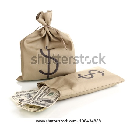 Bags with money isolated on white - stock photo