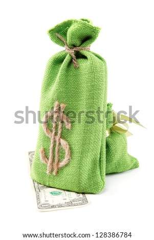 Bags with money isolated on white background. - stock photo