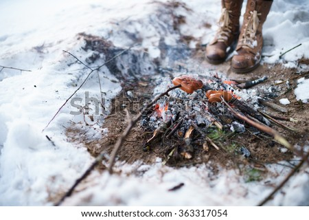 Bake sausages in bonfire in winter camping  - stock photo
