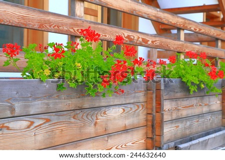 Balcony decorated with red flowers in wooden pots in Cortina d'Ampezzo, Dolomite Alps, Italy - stock photo