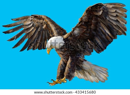 Bald eagle landing hand draw and paint on blue sky background illustration.