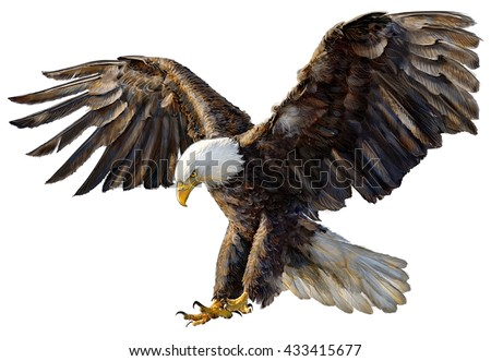 Eagle Wings Stock Photos, Royalty-Free Images & Vectors ...