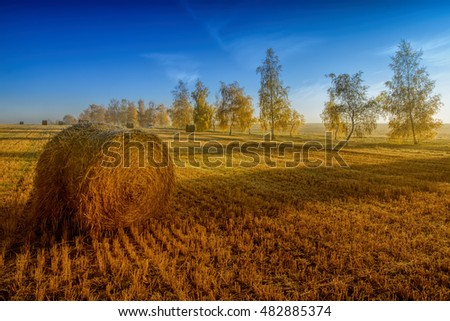 bale of straw and trees