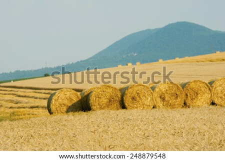 bale of straw on harvested agricultural field at sunset