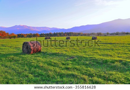 Bales of hay on a green mountain meadow - stock photo