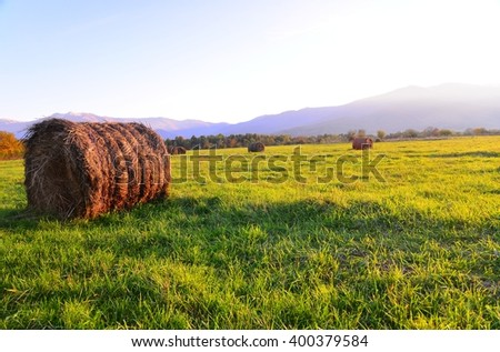 Bales of hay on a green mountain meadow by sunset - stock photo