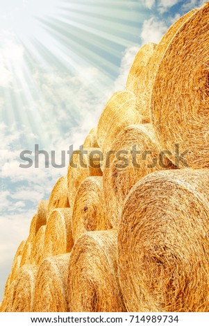 bales of hay on the autumn background