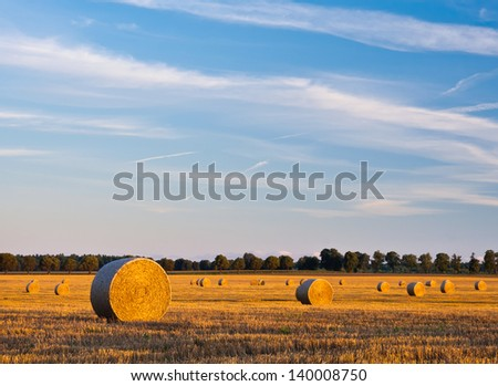 Bales of straw at sunset. summer landscape. - stock photo
