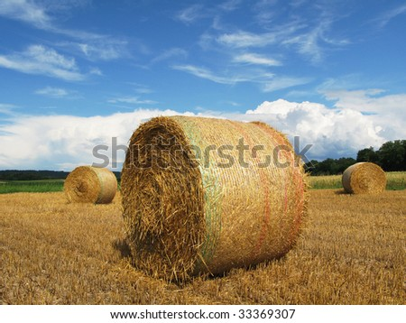 Bales of straw on a field in Switzerland