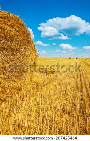bales of straw on harvested wheat field - stock photo