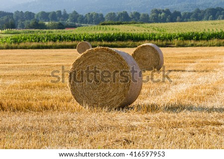 Bales of straw on stubble field