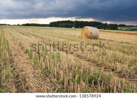 bales of straw rural landscape - stock photo