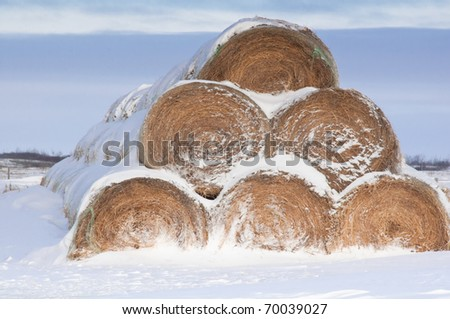 bales stacked in a pyramind
