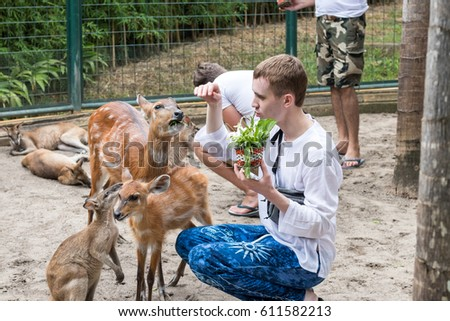 BALI, INDONESIA - March 22, 2017: Tourist man feeding young deers from hands and making shoots on his smartphone in Bali zoo park, Indonesia.