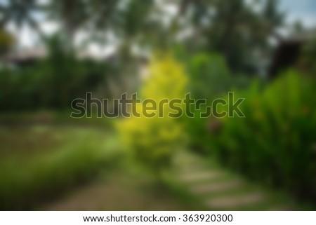 Bali Indonesia Travel theme blur background - stock photo
