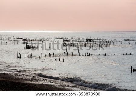 Bali, Nusa Penida Island, Toyapakeh, Indonesia - Plantations of seaweed, algae at low tide with blue sky - stock photo