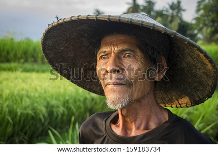 BALI - OCTOBER 10. A local rice farmer checks his plantation on October 10, 2013 in Bali, Indonesia. Indonesia is currently the third-largest producer of rice in the world.  - stock photo