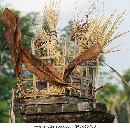 Balinese rice field offering  - stock photo