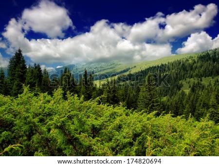 Balkan Mountains - stock photo