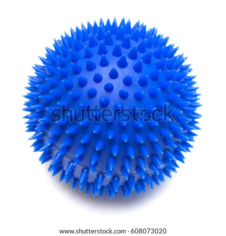 Ball games with a dog isolated on white background. Flat lay, top view