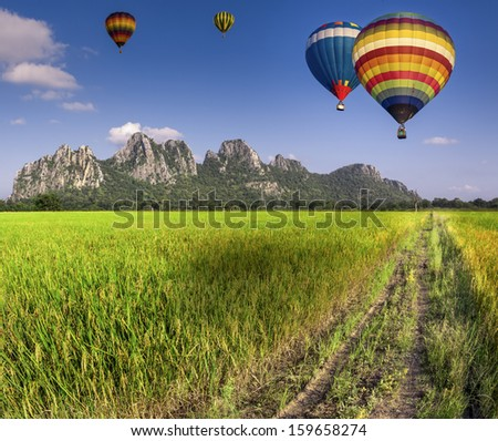 Balloon fly on Green Terraced Rice Field in Chiangmai, Thailand