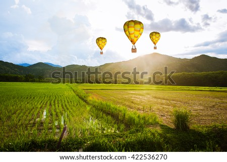 Balloon flying over rice field ,morning
