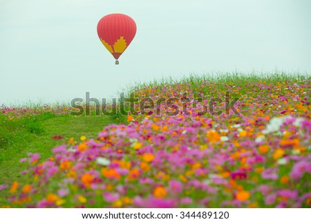 Balloons and flowers, beautiful colors.