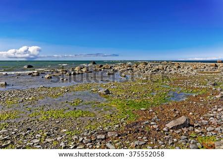Baltic sea shore on low tide at Hiiumaa island, Estonia - stock photo