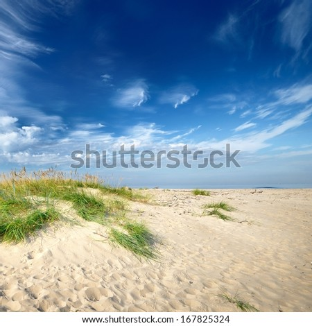 Baltic sea shore sandy beach against blue sky - stock photo