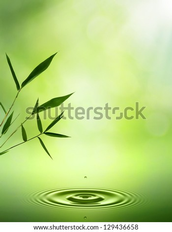 Bamboo. Abstract oriental backgrounds for your design - stock photo