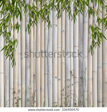 bamboo Background ,and frame of bamboo-leaves background - stock photo