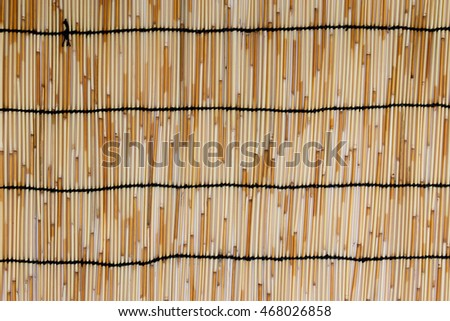 Bamboo blinds Background