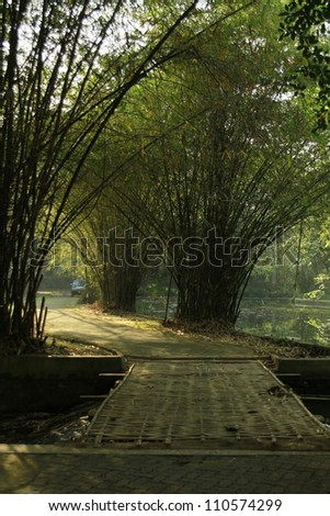 Bamboo bridges with green background