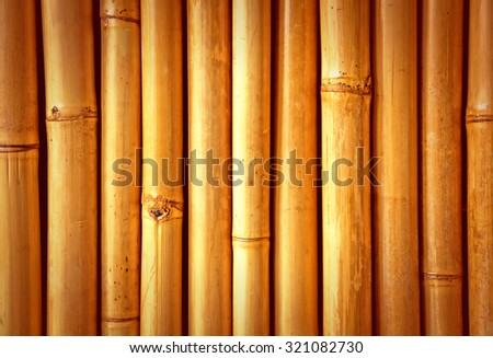 Bamboo close up, nice grunge texture for your projects