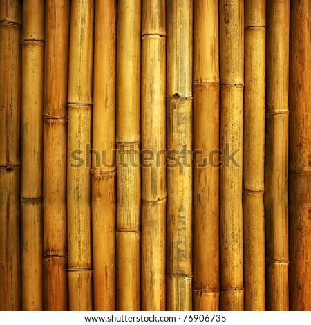 bamboo fence - stock photo