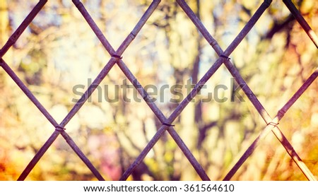 Bamboo Fence Background - stock photo