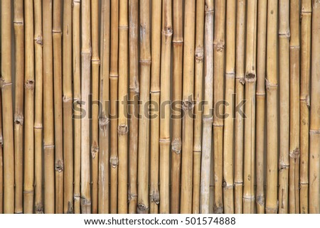 Bamboo fence background. Bamboo texture for text and render