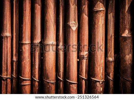 bamboo fence background or textures