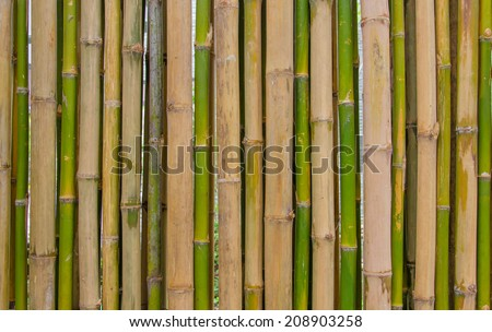 bamboo fence background texture pattern