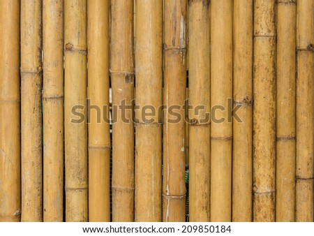 bamboo fence background texture pattern. - stock photo