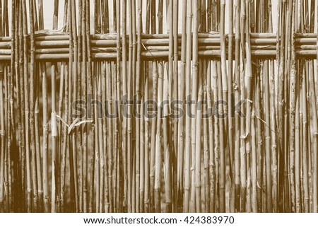 Bamboo fence tropical style made by filter color. - stock photo